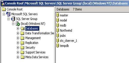 Using SharePoint Database Explorer on SBS - Microsoft Tech