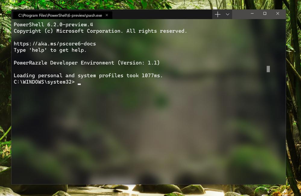 terminal-screenshot.png