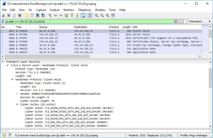 A network trace capturing TLS negotiation, Client Hello