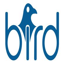 BIRDonCloud.png