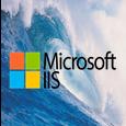 IIS On Windows Server 2019.png