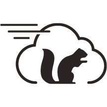 Squirrel Cloud POS.png