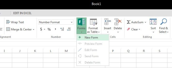 excel_forms.jpg