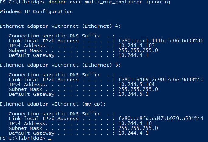 Container with multiple endpoints belonging to two different networks