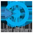 Vision Platform 365.png
