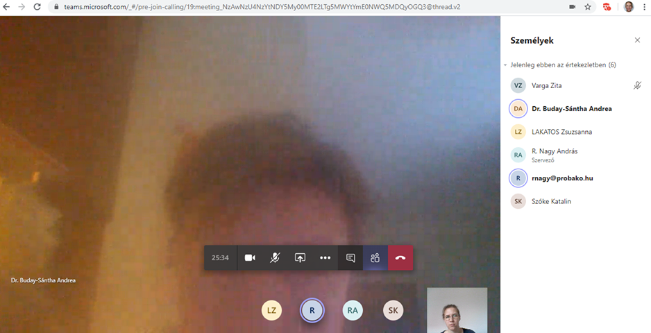 Teams chat view.png