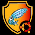 Squid Protected Сaching Proxy Server for Ubuntu.png