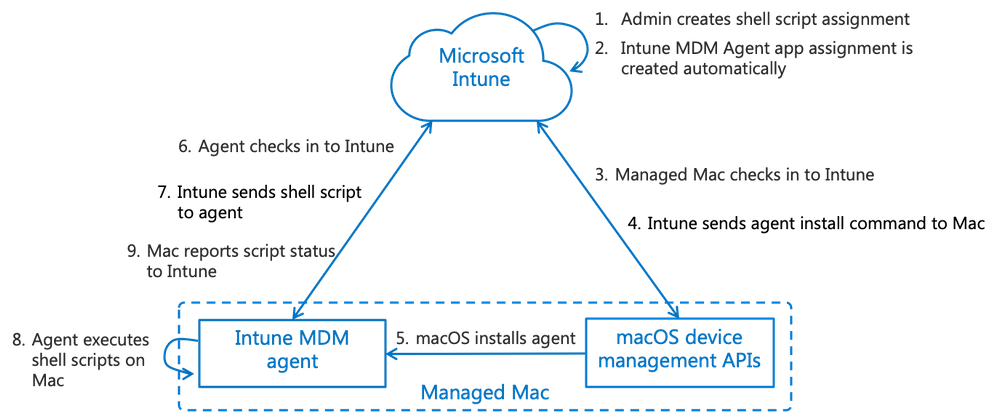 Overview of Mac scripting with Intune