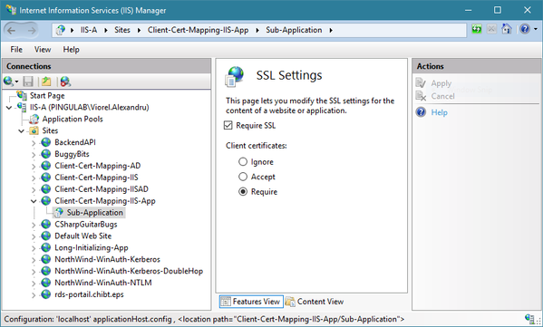 SSL Settings for the sub-application