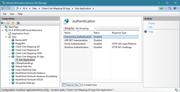 Authentication settings for the sub-application