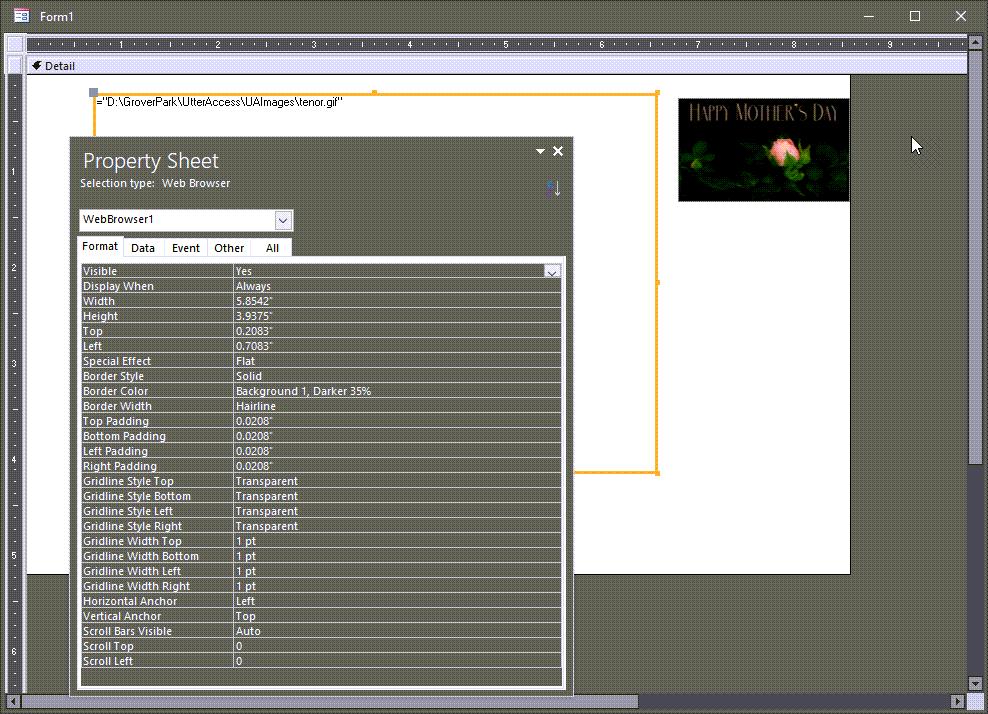 WebBrowserGIFImageControlonForm.png