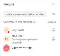 PSTN participant phone numbers are masked with asterisks to users outside of your organization.