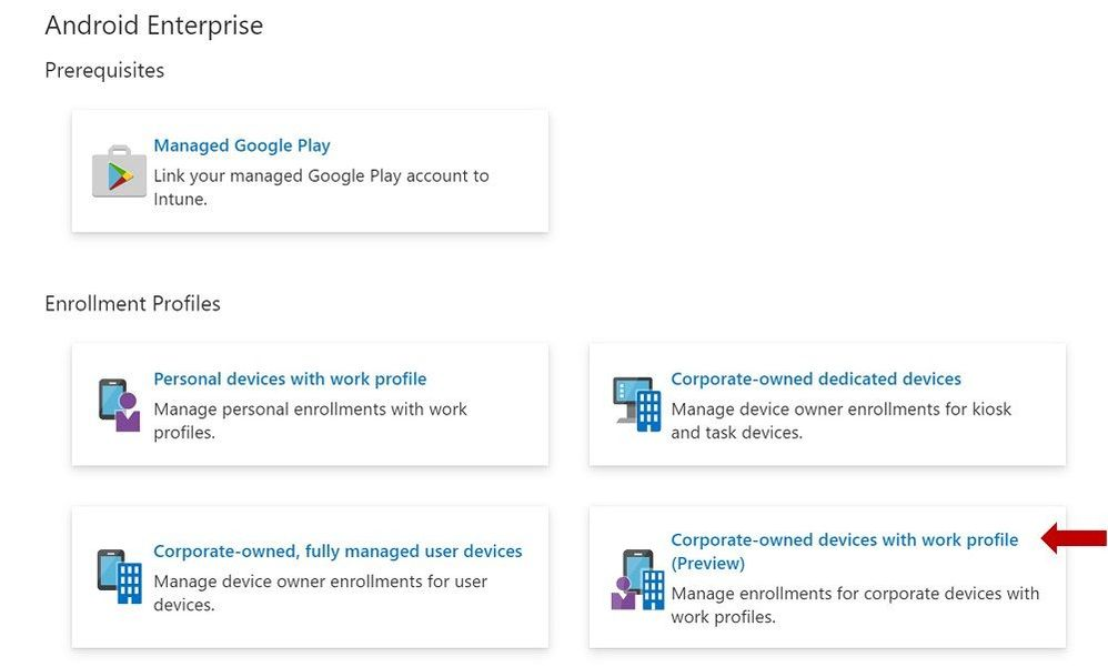 Enrollment Profiles | Corporate-owned devices with work profile (Preview)