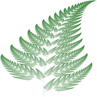 Computer generated fern by Laug (created with Processing)