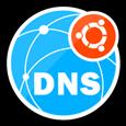 DNS Server (IaaS) for Ubuntu 18.04 LTS.png