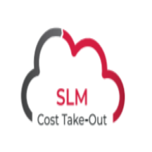 SLM Cost Take-Out.png