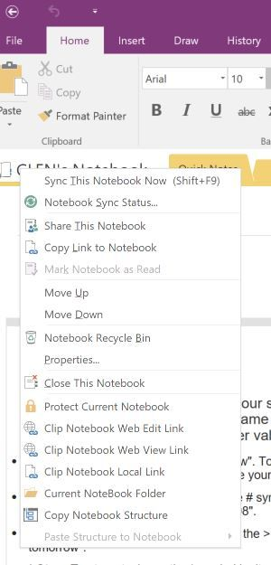 Capture OneNote Web View Link.JPG
