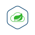 Spring Cloud Data Flow Shell Container Image.png