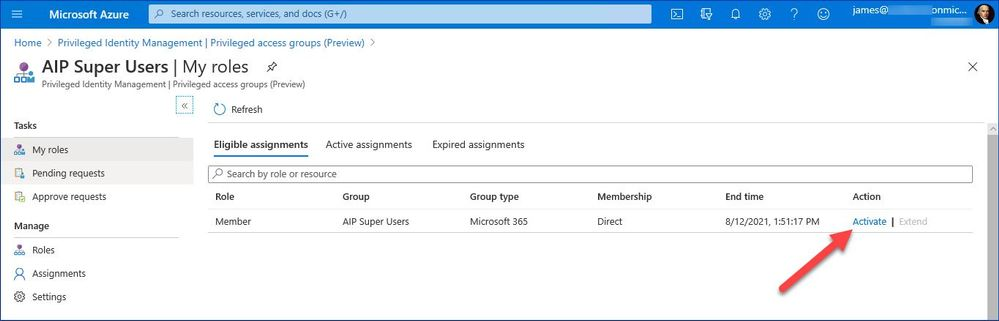 Figure 12: List of privileged groups the user is eligible for