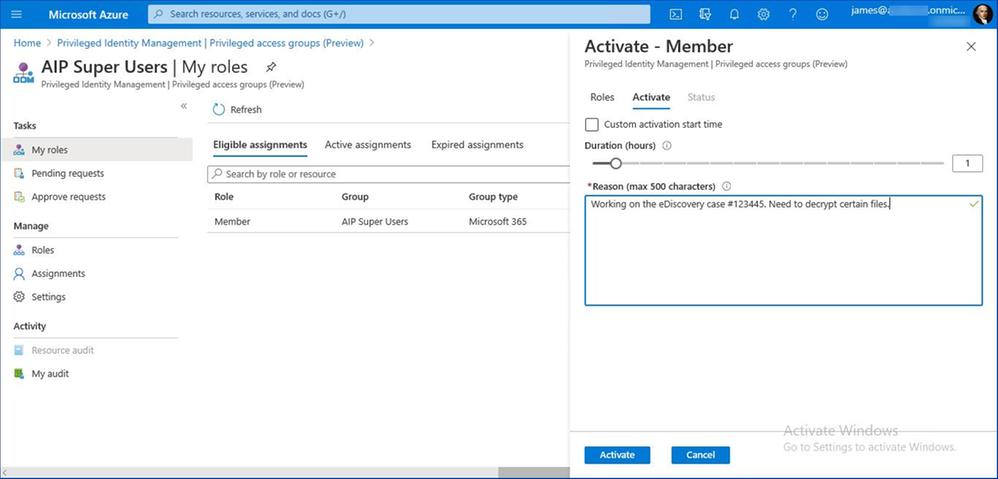 Figure 13: Privileged group activation dialog
