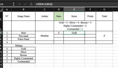 Excel Screenshot.jpg