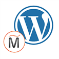 WordPress- Content Management System.png
