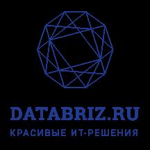 Databriz Project Management Portal.png