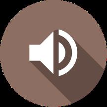 Interactive Audio by FeedbackFruits.png