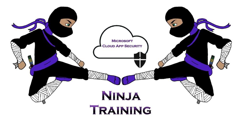 Updated Ninja Diagram.png