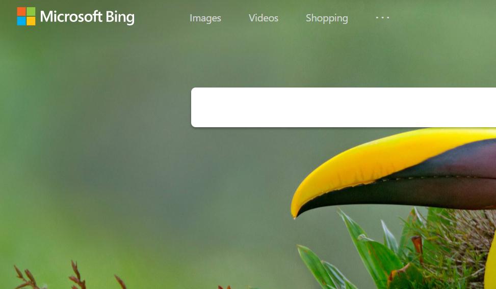 Microsoft Bing.png