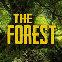 The Forest 2 Game Server on Windows Server 2016.png
