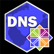 DNS Server (IaaS) on Linux CentOS 7.8.png