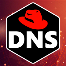 DNS Server (IaaS) on Red Hat Enterprise Linux 8.2.png