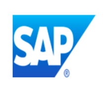 SAP Data Custodian.png