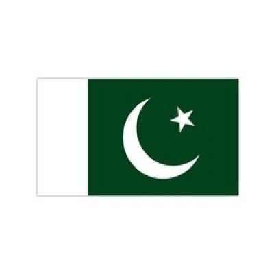 buy-pakistani-flag-badge-online-pakistan-stationeryx_250x250.jpg