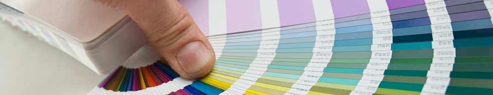 Hand holds open a color swatch book displaying multiple colors.