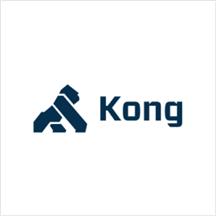 Kong Mesh 1.1.png