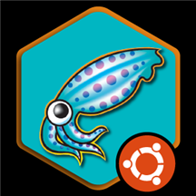 Squid Proxy Server on Ubuntu 18.04 Minimal.png