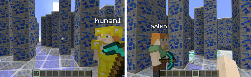 malmo_human_ai_interaction-web.png