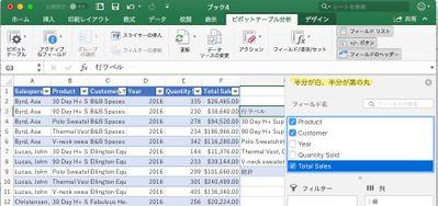 MacExcel_jp_05.jpg