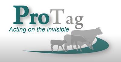 ProTag Logo.PNG