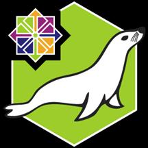 MariaDB 10.5 on Linux CentOS 8.2.png