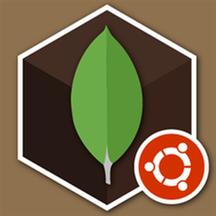 MongoDB 4.4.1 on Ubuntu 20.png