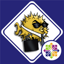 SFTP - OpenSSH FTP Server on CentOS 7.8.png