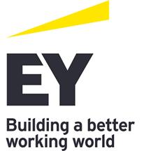 EY Digital Enablement.png