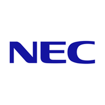 NEC Professional Services.png