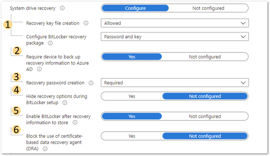 Azure AD joined device system drive recovery settings