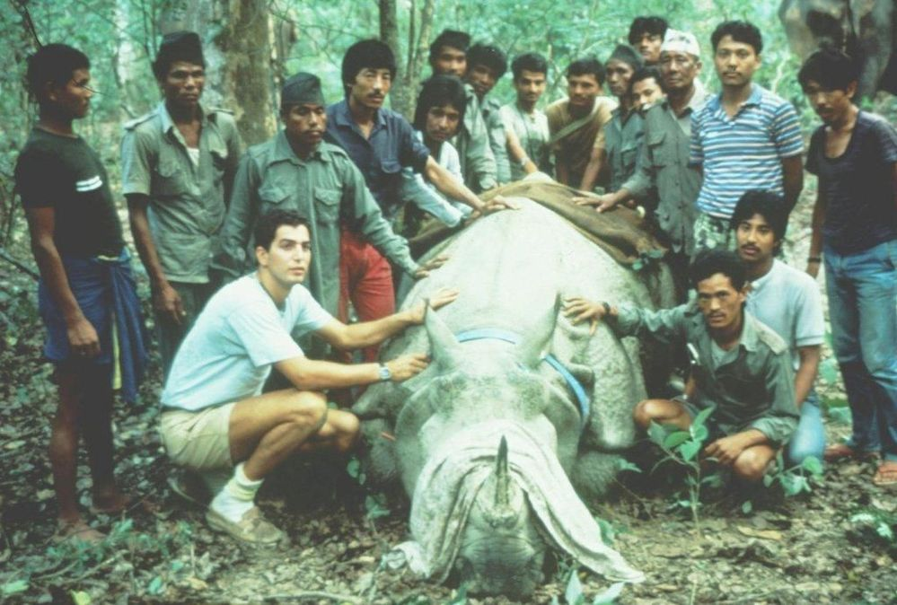 Dr. Eric Dinerstein collaring the first Rhino at Kathmandu Zoo - c. 1986