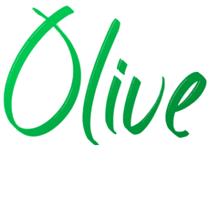 Olive Data Ingestion Framework.png