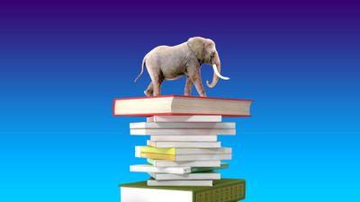 Postgres-elephant-on-stack-of-books-blue-background-1920x1080.jpg